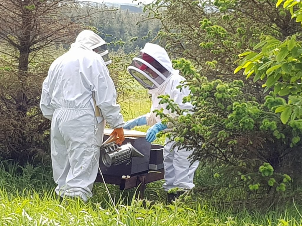Introduction to Beekeeping Course 2020